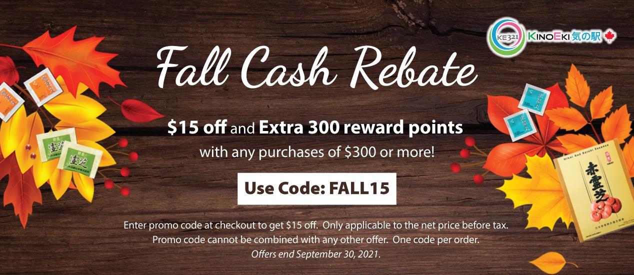 Fall Cash Rebate
